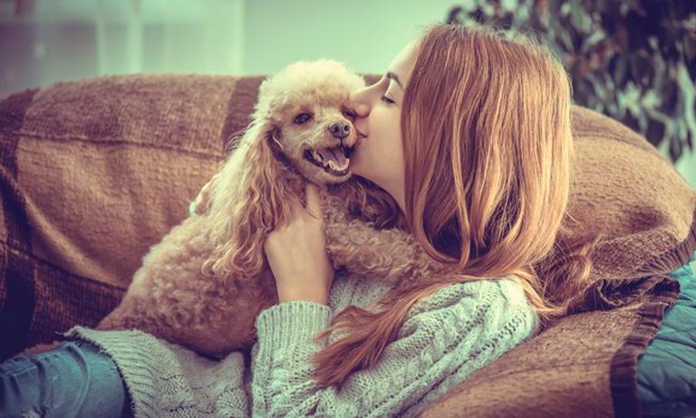 Medo de ter problemas com pet em condomínio? Saiba o que fazer